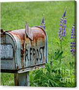 Whose Mailbox This Is I Think I Know Canvas Print