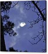Wicked Moon Canvas Print