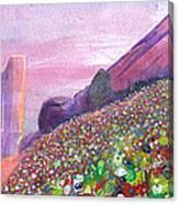 Widespread Panic At Redrocks Canvas Print