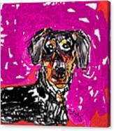 Wiener Dog Canvas Print