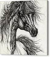 Wieza Wiatrow Polish Arabian Mare Drawing Canvas Print