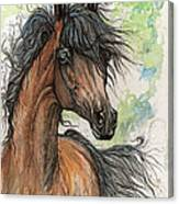 Wieza Wiatrow Polish Arabian Mare Watercolor Painting  Canvas Print