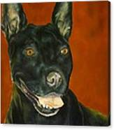 Wiggles, Dog Canvas Print