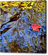 Wiggling Water Canvas Print