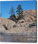 Willow Lake Number One Color Canvas Print