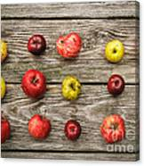 Wild Apples Canvas Print