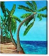 Wild Beach Canvas Print