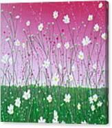 Wild Daisy Field Canvas Print