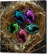 Wild Eggs In My Nest Canvas Print