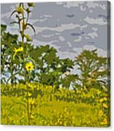 Wild Flower Field Abstract Canvas Print