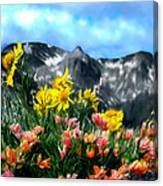 Wild Flowers In The Moutains Canvas Print
