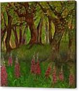 Wild Foxgloves Canvas Print