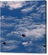 Wild Goose Heaven Canvas Print
