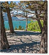 Wild Goose Island 2 Canvas Print