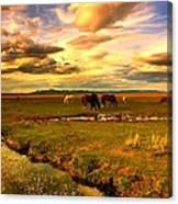 Wild Lands Of Nevada  Canvas Print