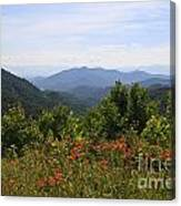 Wild Lilies With A Mountain View Canvas Print