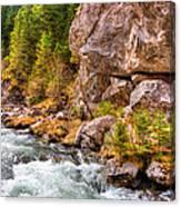 Wild Mountain River Canvas Print
