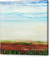 Wild Poppies Corbridge  Canvas Print