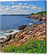 Wild Roses At Lakies Head In Cape Breton Highlands Np-ns Canvas Print