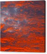 Wild Sky Canvas Print
