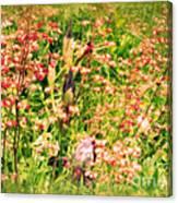 Wild Unfettered Beauty Canvas Print