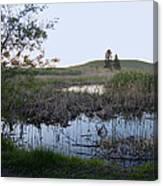 Wild Wetland Canvas Print