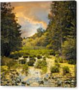 Wild Wetlands Canvas Print