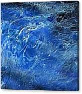 Wild Wild Sea Canvas Print