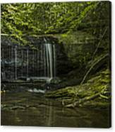 Wildcat Falls Canvas Print