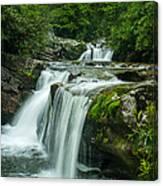 Wildcat Falls In Joyce Kilmer Wilderness Canvas Print