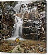 Wildcat Falls Yosemite  Canvas Print