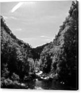 Wilderness Of Appalachia Canvas Print