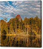 Wilderness Pond 2 Canvas Print