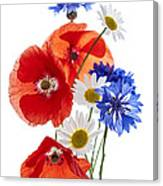 Wildflower Arrangement Canvas Print