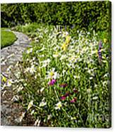 Wildflower Garden And Path To Gazebo Canvas Print