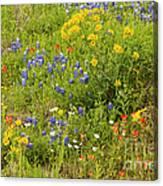 Wildflower Patch Canvas Print