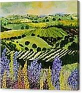 Wildflower Ridge Canvas Print