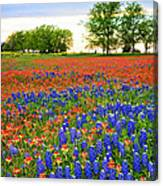 Wildflower Tapestry Canvas Print