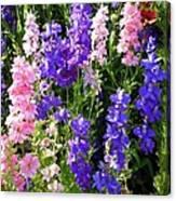 Wildflowers #15 Canvas Print