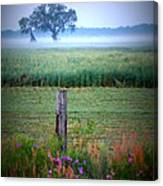 Wildflowers And Fog Canvas Print
