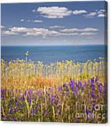 Wildflowers And Ocean Canvas Print