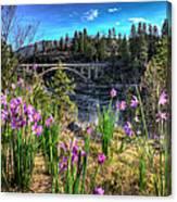 Wildflowers And Old Bridge Canvas Print
