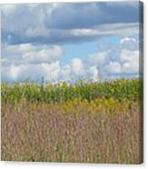 Wildflowers And Ornamental Grass Canvas Print