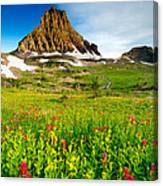 Wildflowers At Logan Pass Canvas Print