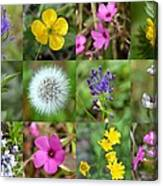 Wildflowers Mosaic Canvas Print