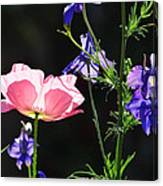 Wildflowers On Black Canvas Print