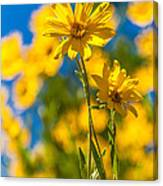 Wildflowers Standing Out Canvas Print