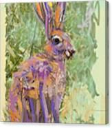 Wildlife Haas Canvas Print