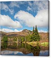 Wildlife Pond - Bethlehem New Hampshire Usa Canvas Print