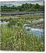Wildlife Refuge Reflections Canvas Print